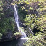 Another Waterfall on the road to Hana