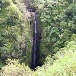 Secret Waterfall on the road to Hana